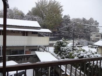 都心で降雪_01.JPG